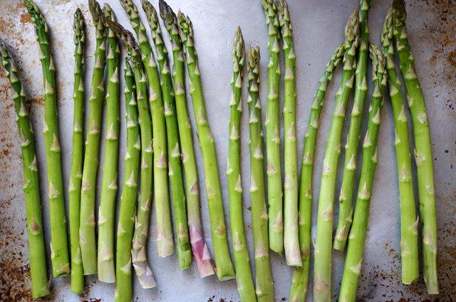 asparagus | HonestlyYum