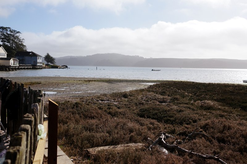 Tomales Bay // HonestlyYUM