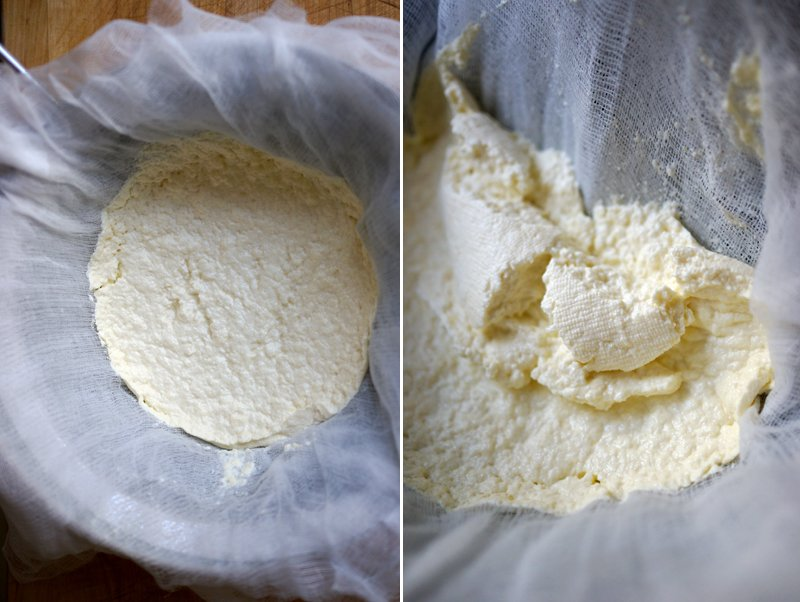 fresh ricotta // HonestlyYUM