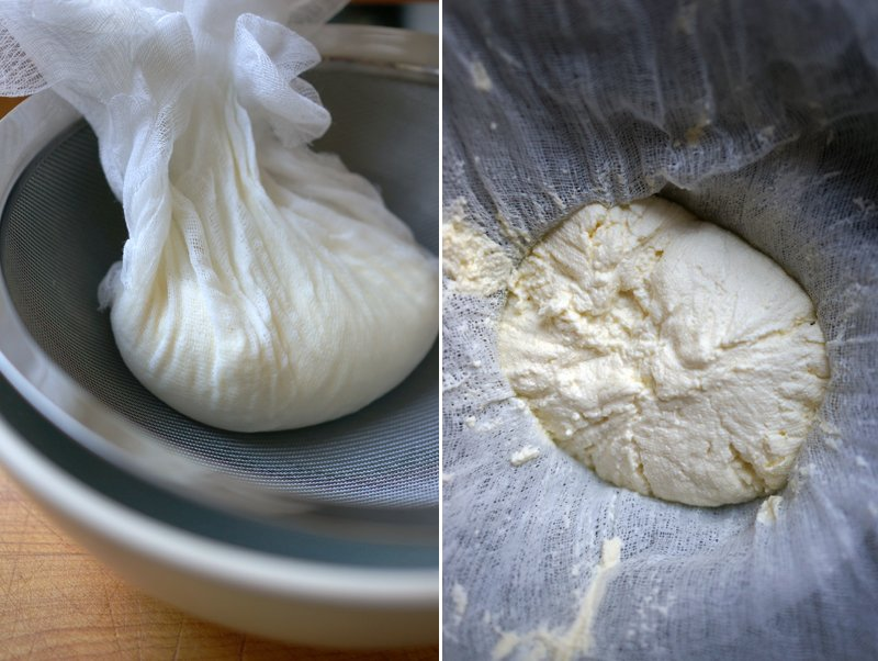 strained ricotta cheese // HonestlyYUM