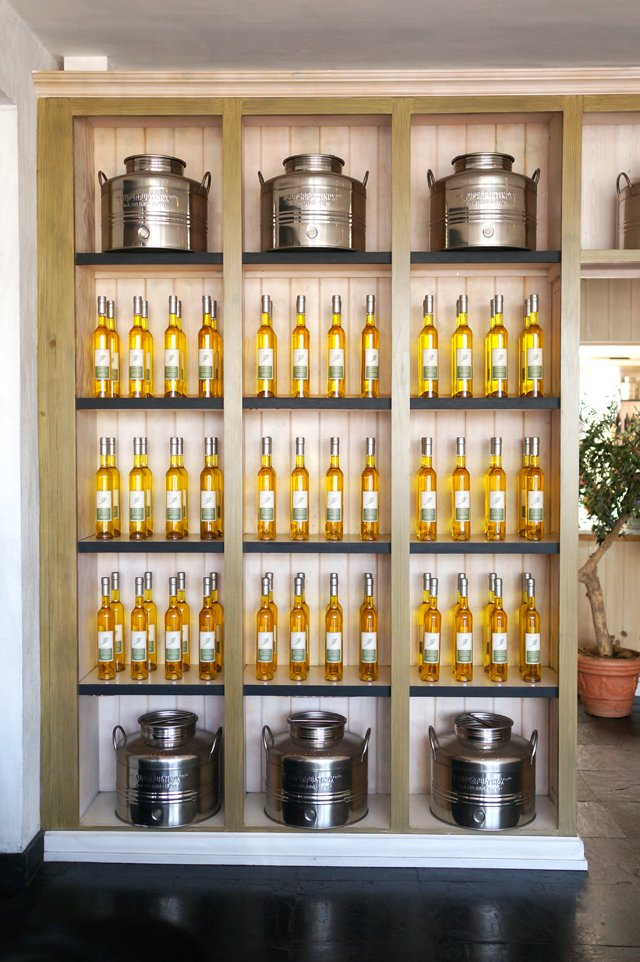 olive oil tasting 10