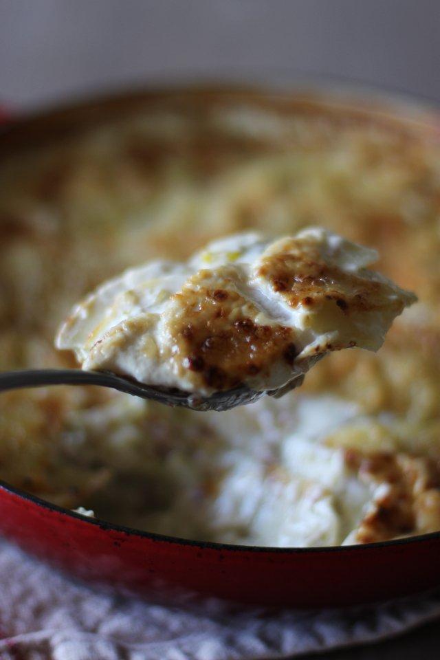 Potato leek gratin 8