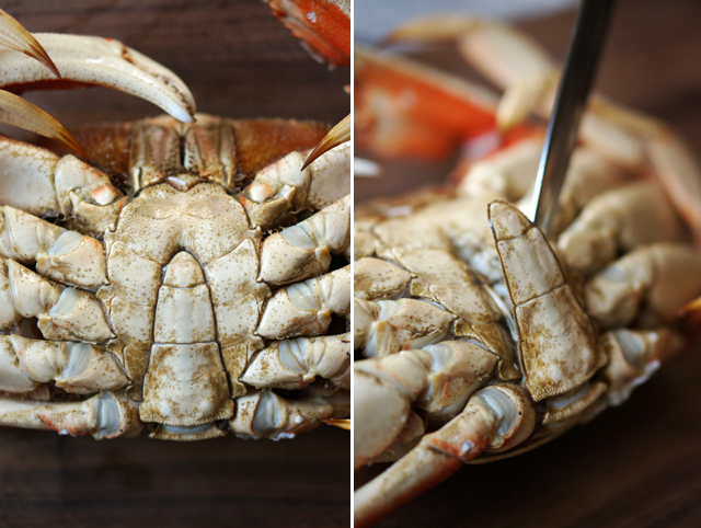 How to shell a crab 1