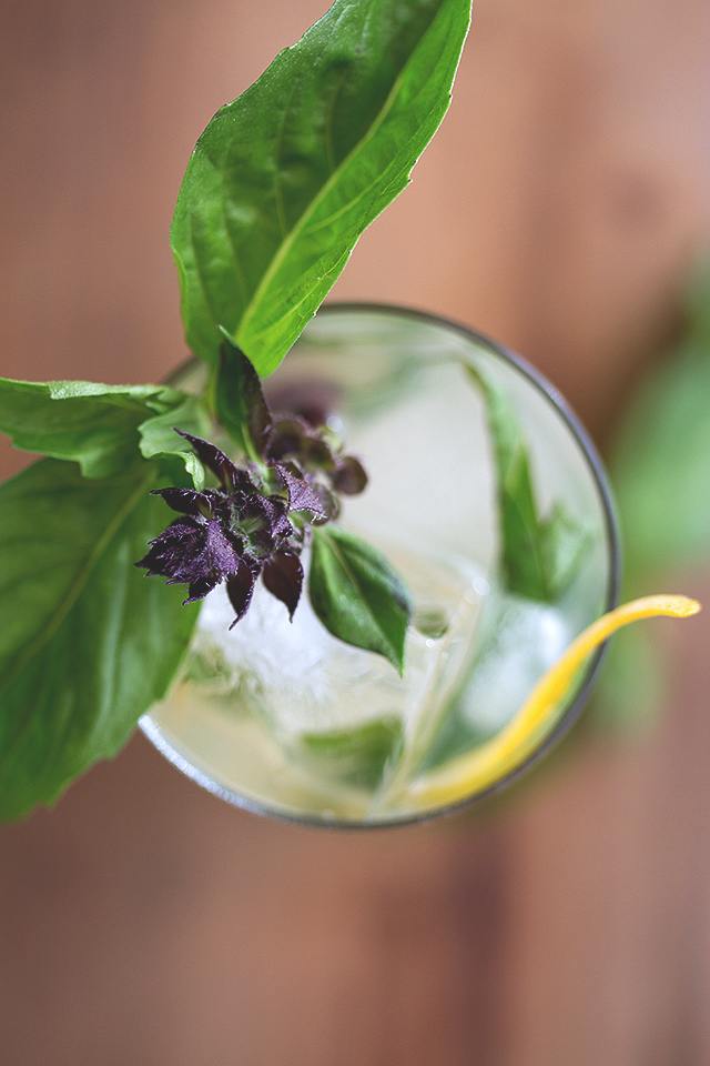 Buddha's Hand and Thai Basil Cocktail // HonestlyYUM