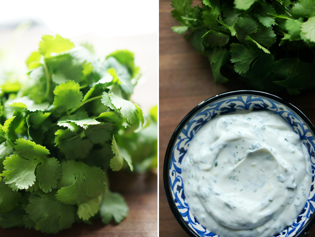 Cilantro garlic yogurt