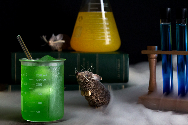 Halloween Evil Drink Lab | HonestlyYUM