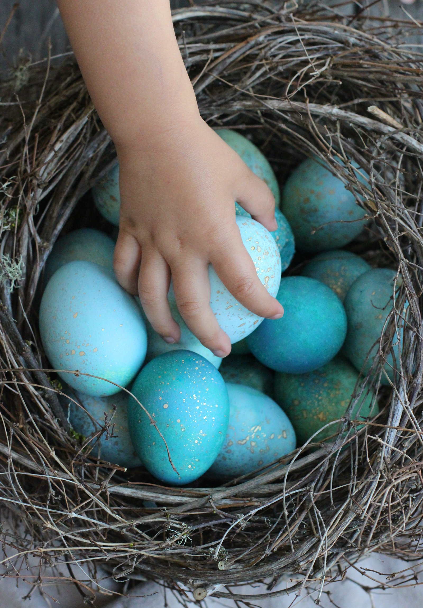 diy dyed robin eggs � honestlyyum