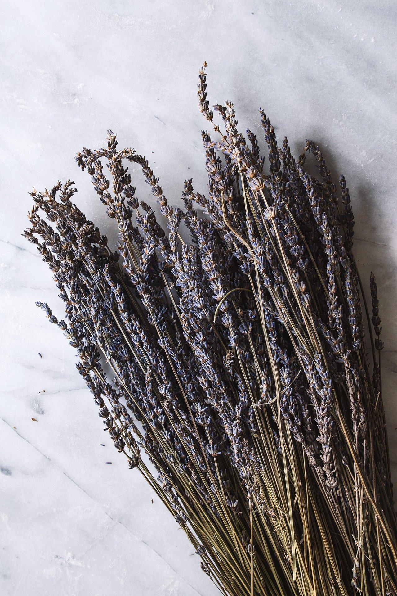 Lavender | HonestlyYUM