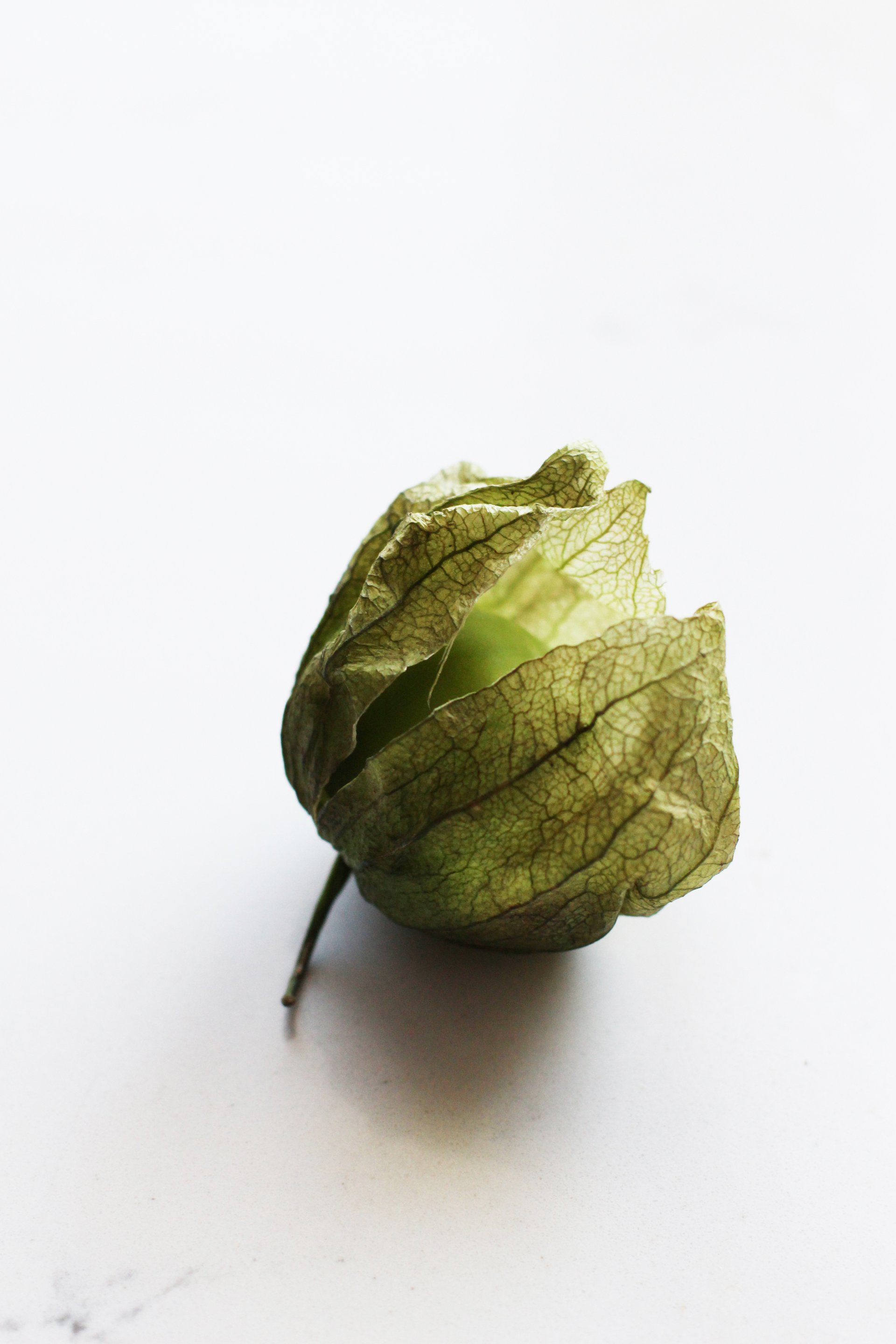 Tomatillo | HonestlyYUM