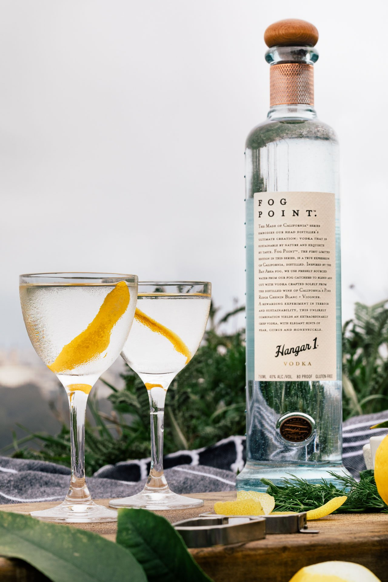 Fog Point Vodka Martini | HonestlyYUM (honestlyyum.com) | @Hangar1Vodka and #Hangar1Vodka and #FogPointVodka