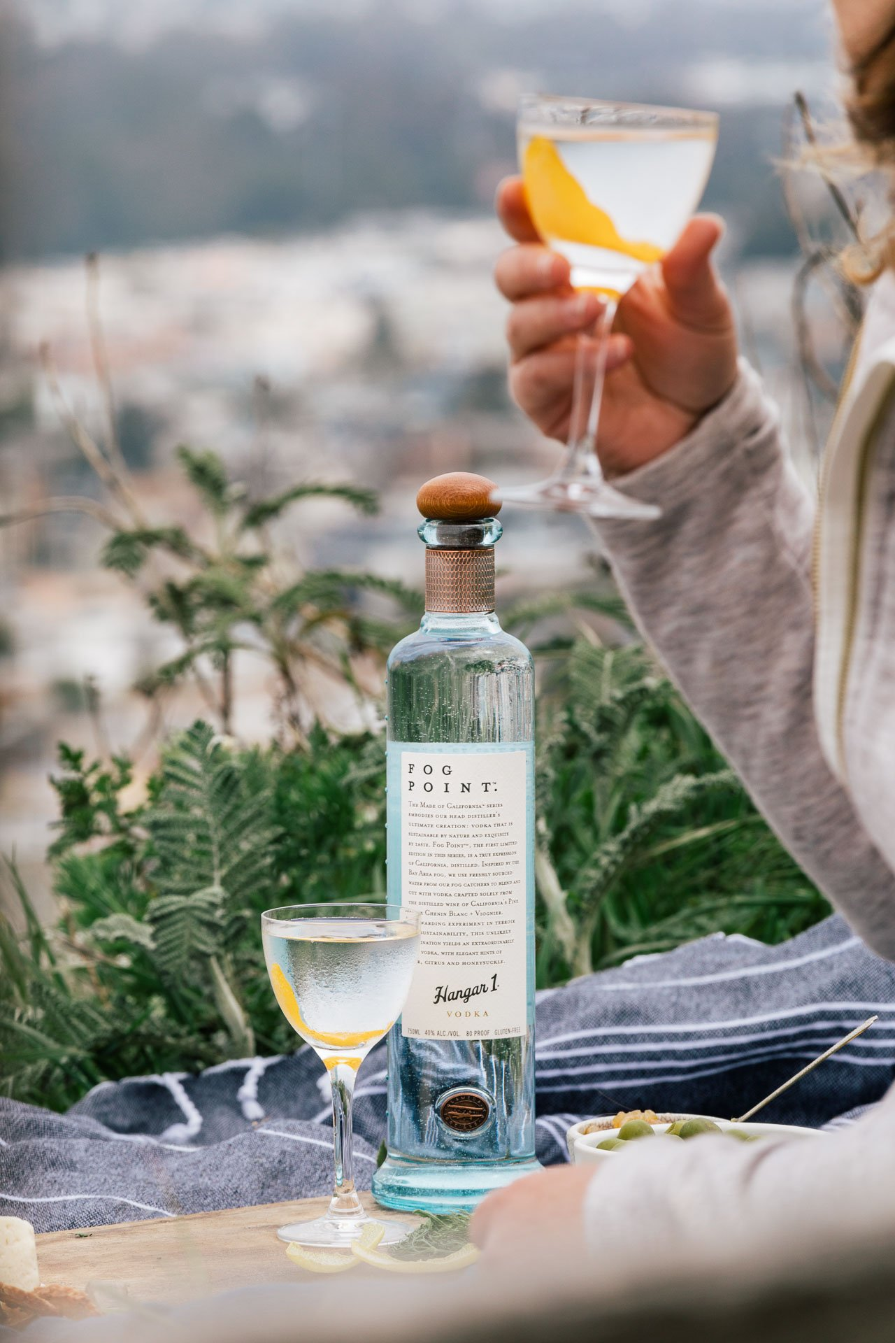 Fog Point Vodka Martini | HonestlyYUM (honestlyyum.com)