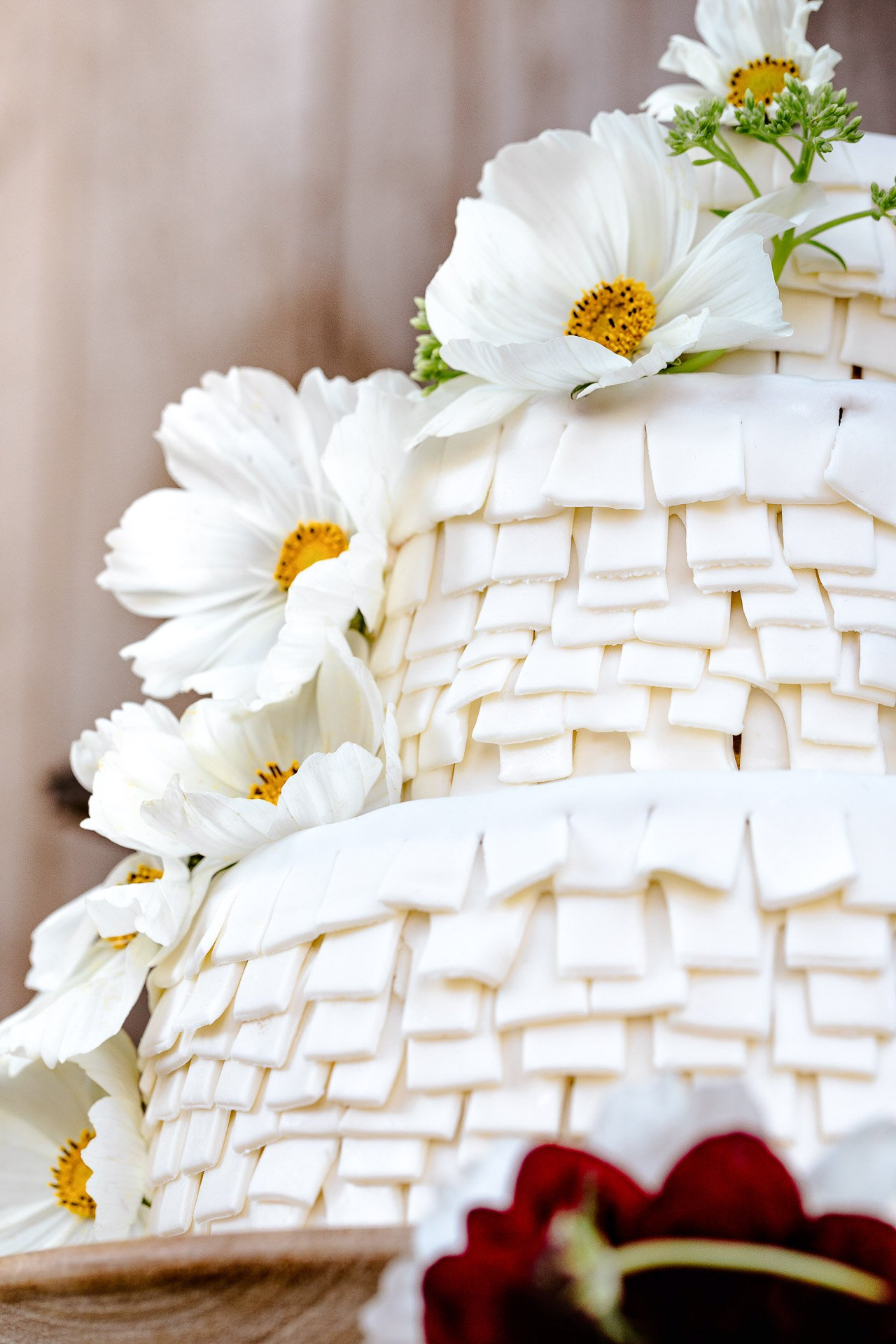 Piñata Wedding Cake | HonestlyYUM (honestlyyum.com)